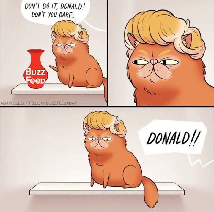 dont do it donald.jpg